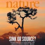 Mudanças Climáticas podem alterar o papel da Floresta Amazônica