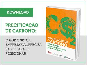 Precificação de Carbono