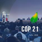COP 21: a busca por um acordo mundial pelo clima