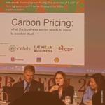 Guia de Precificação de Carbono: o que o setor empresarial precisa saber