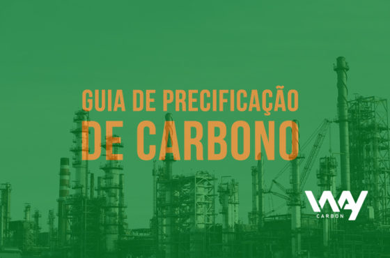 guia de precificação de carbono