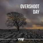 Recursos naturais esgotados: entenda o Overshoot day