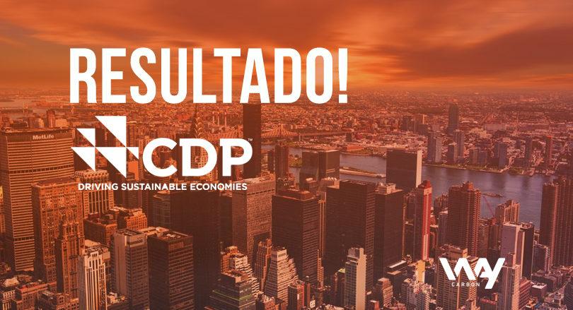 CDP 2017
