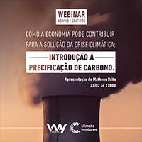 precificação de carbon