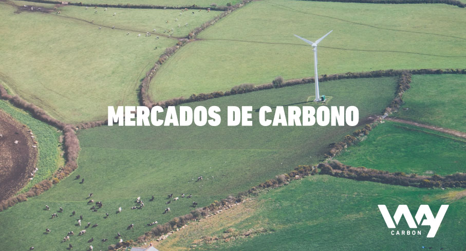 Creditos de carbono